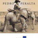 Pedro Peralta 2014